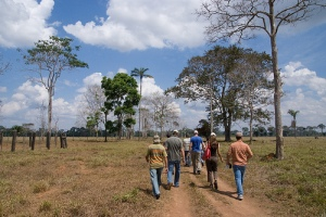 Stakeholders field visit to 'semi-intensification' model cattle ranches in Acre State.