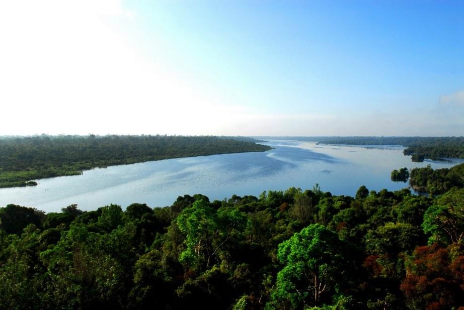 The Giam Siak Kecil-Bukit Batu peatland in Riau Province of Sumatra, Indonesia Credit: Ariau Aditya/CC